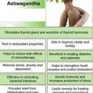 Ambrosial Ashwagandha Essential Oil 100% Pure Organic Natural