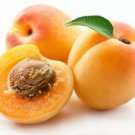 Ambrosial Apricot Essential Oil 100% Pure Organic Natural Uncut 10ml - 1000ml
