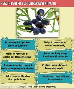 Ambrosial Juniper Oil 100% Pure Organic Natural 10ml to 1000ml