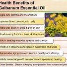 Galbanum Oil 100% Natural by Ambrosial 10 ml to 1000ml