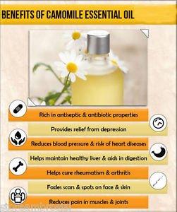Ambrosial Roman Chamomile Essential Oil 100% Pure Organic Natural