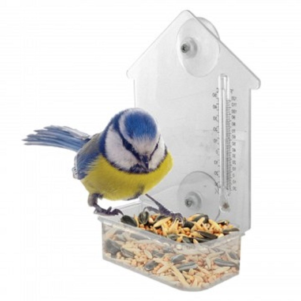 Window Bird Feeder with Thermometer