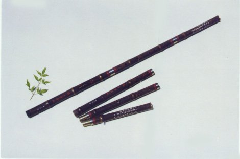 JY-204-Special Professional Black Bamboo  Vertical Flute W/T Double Copper Joints