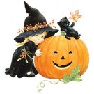 Pumpkin Witch Tee Shirt
