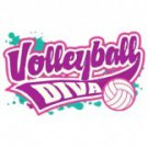 Volleyball Diva Tee Shirt