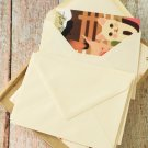 Ivory Magnolia plain C6 banker envelopes