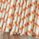 Orange Big Dots paper straws