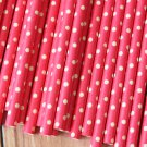 Solid Hot Pink Swiss Dots paper straws