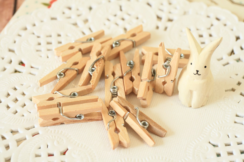 Plain Natural Mini Wood Pegs Clips