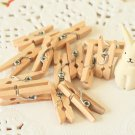 Plain Natural Mini Wood Pegs Clips