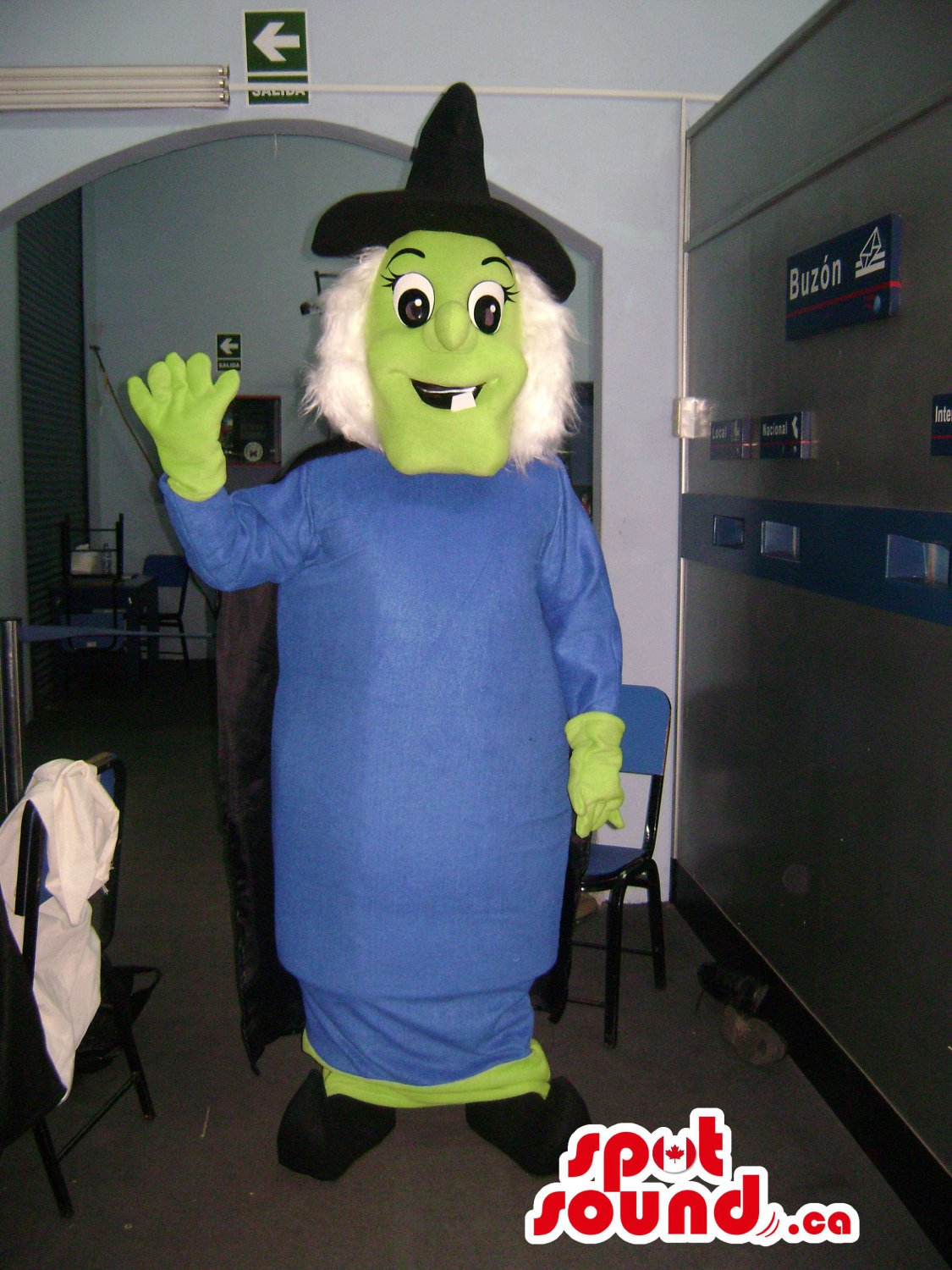 A Green Witch With Black Hat, Blue Dress And White Hair