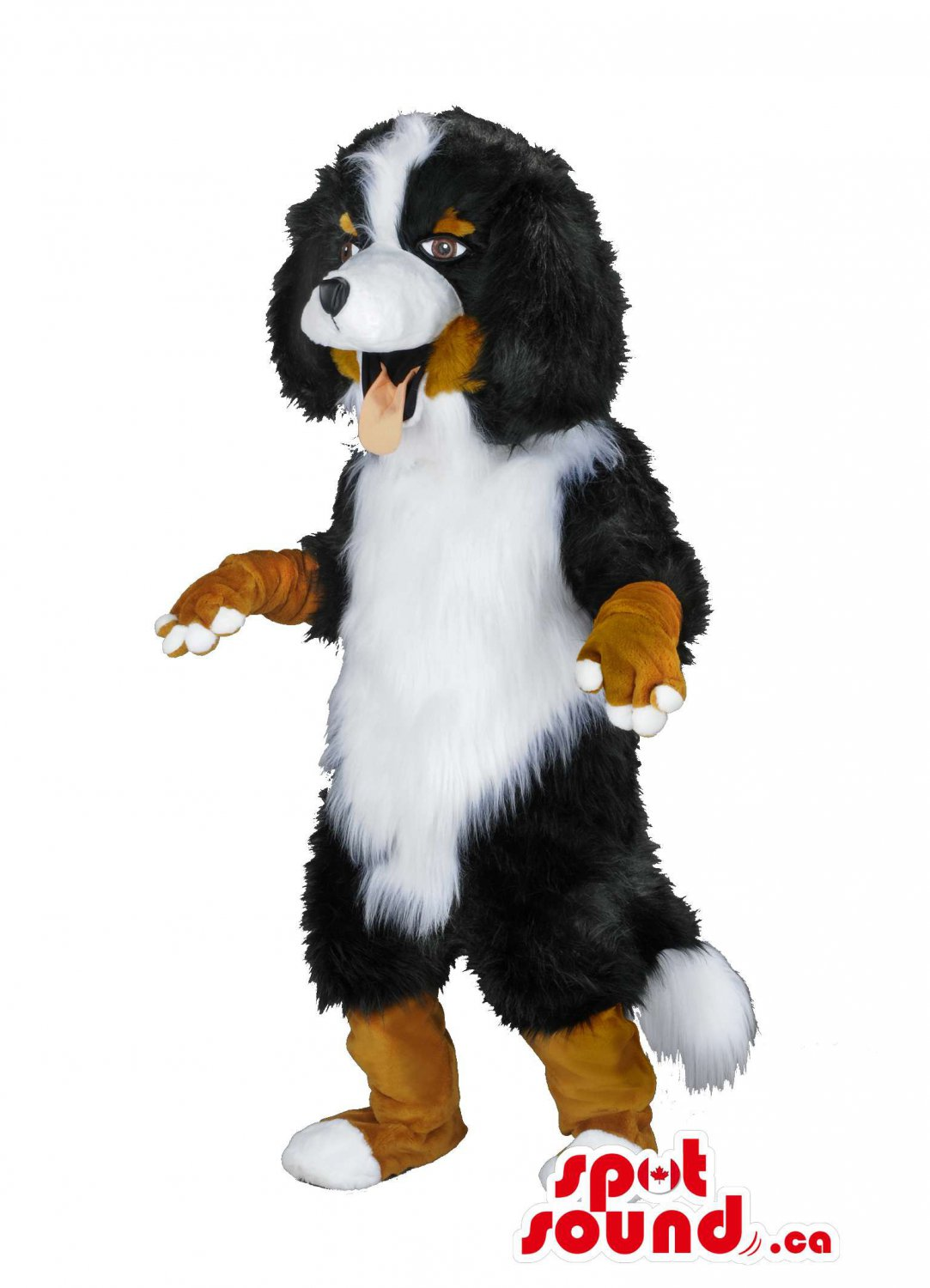 Bernese Mountain Dog Mascot SpotSound Canada With Woolly Brown And Black Fur