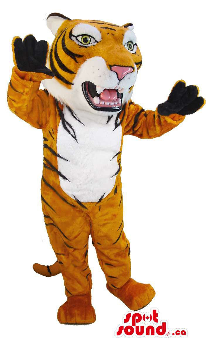 Tiger Mascot SpotSound Canada With Teeth, Jaws And White Belly And Black Stripes