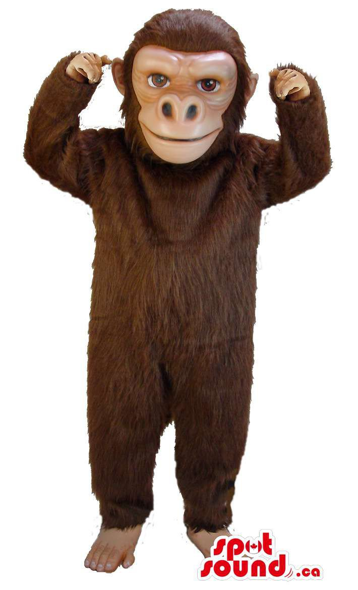 Brown Monkey Animal All Mascot SpotSound Canada With Real-Looking Hands And Feet