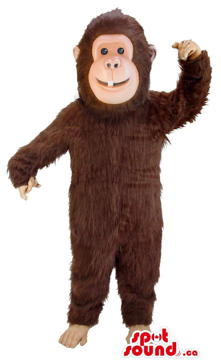 Brown Monkey Animal All Mascot SpotSound Canada With White Tooth And Black Eyes