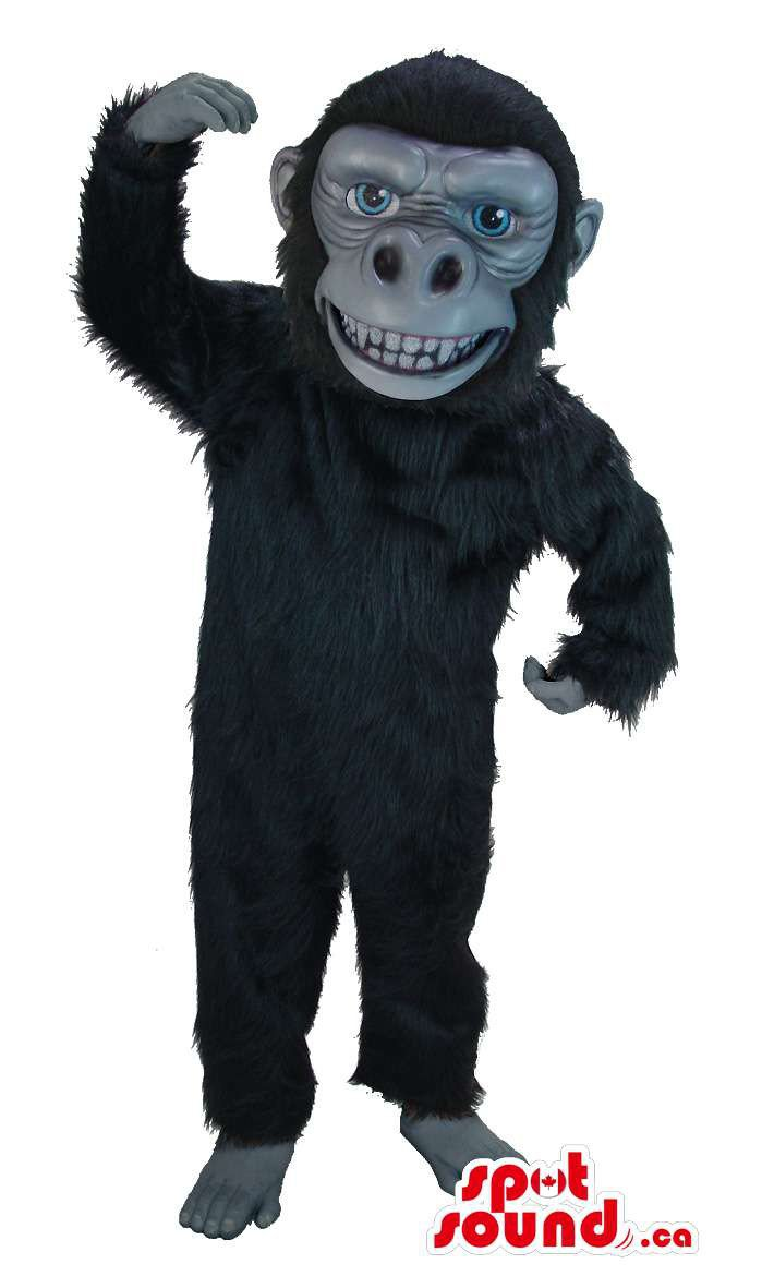 Black Gorilla Animal Mascot SpotSound Canada With Large Teeth And Grey Face