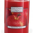 Macintosh Apple 22 Oz. Candle By City Creek Candles