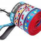 Blueberry Pet 3/4-inch By 5-Feet Designer Nylon Dog Leash With Vibrant Triangle