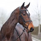 Horze Constance Snaffle Bridle - Size:Pony Color:Lt Brown