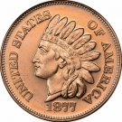 Coin Set 20 - 1 oz Copper Rounds Indian Head Cent