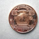 Coin US 10 Dollars Buffalo Banknote 1 oz Copper Round