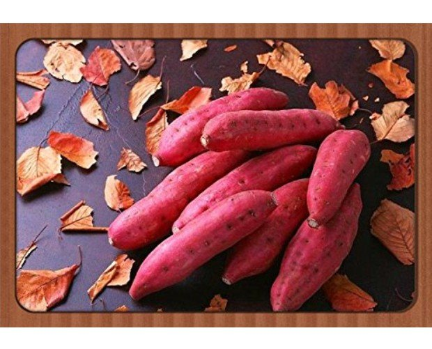 Super 100 Seeds Leguminosae Sweet Potato High Carbohydrate Healthy