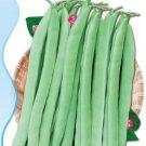 Super 25 Seeds Green Kidney Bean Organic Vegetable Tasty Non Gmo