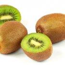 Edible Fruit Vine Prolific Hardy Kiwi Fruit Plant Healthy Garden