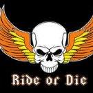 BIKER RIDE OR DIE Motorcycle FLAG, 3'x5' cloth poster banner FLAG
