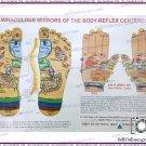 Foot/Hand Reflexology Therapy Chart Quick Study Academics Teaching Educational