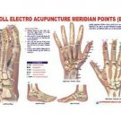 Acupuncture Meridian Points Chart - E.A.V.Study Academics Teaching Educational