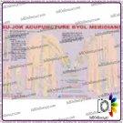 Sujok Acupuncture Byol Meridian Chart Quick Study Academics Teaching Educational