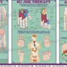 Set Of 3 - Sujok Therapy Chart - Must For Academics Teaching Educational