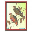 Best Quality Love Bird First Feng Shui Poster - Prosporos Life & Good Fortune
