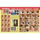 New Reiki Healing Chart Quick Study Academics Teaching Educational