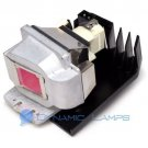 PJD6230 RLC-036 RLC036 Replacement Lamp for Viewsonic Projectors