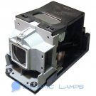 TDP-ST20 TDPST20 TLP-LW15 TLPLW15 Replacement Lamp for Toshiba Projectors
