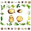 Organic Pure And Natural Raw Herbs Kapur Kachari - Curcuma Zedoaria