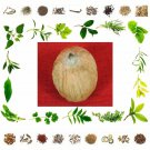 Organic Pure And Natural Dry Fruit Laghu Nariyal - Small Coconut-25 Gms