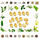 Organic Pure And Natural Raw Herbs Karela Bee - Carillabr Seed