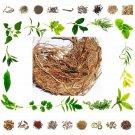 Raw Herbs Vala - Khas – 100% Natural Ayurveda Health Care