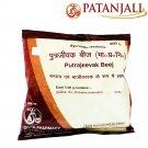 Patanjali Divya Putrajevak Seed 200Gm Natural Herb Help For Women 200Gm