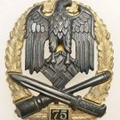 WWII GERMAN NAZI GENERAL ASSAULT BADGE - SPECIAL GRADE 75