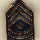 E-9 Army Sergeant Major Hat Pin
