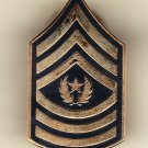 E-9 Army Command Sergeant Major Hat Pin
