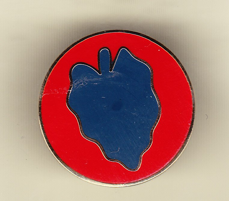 24th Infantry Division Hat Pin