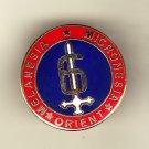 6th Marine Division Hat Pin