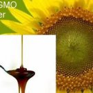 Raw PURE liquid Sunflower Lecithin Muscles nerves NO chemical pesticide NON GMO
