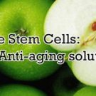 8 oz. PhytoCellTec™ APPLE STEM CELL repair skin wrinkles REGENERATES NEW CELLS**
