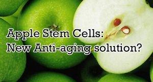 8 oz. PhytoCellTec� APPLE STEM CELL repair skin wrinkles REGENERATES NEW CELLS**